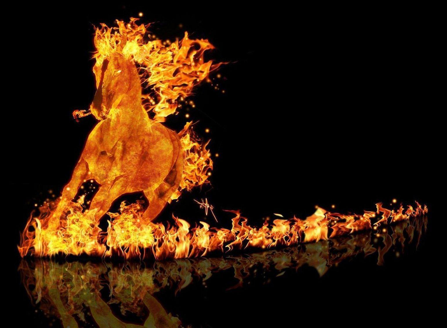 гороскоп года лошади 1966